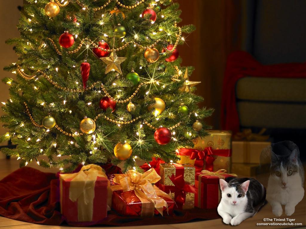 Annie's Christmas Prayer