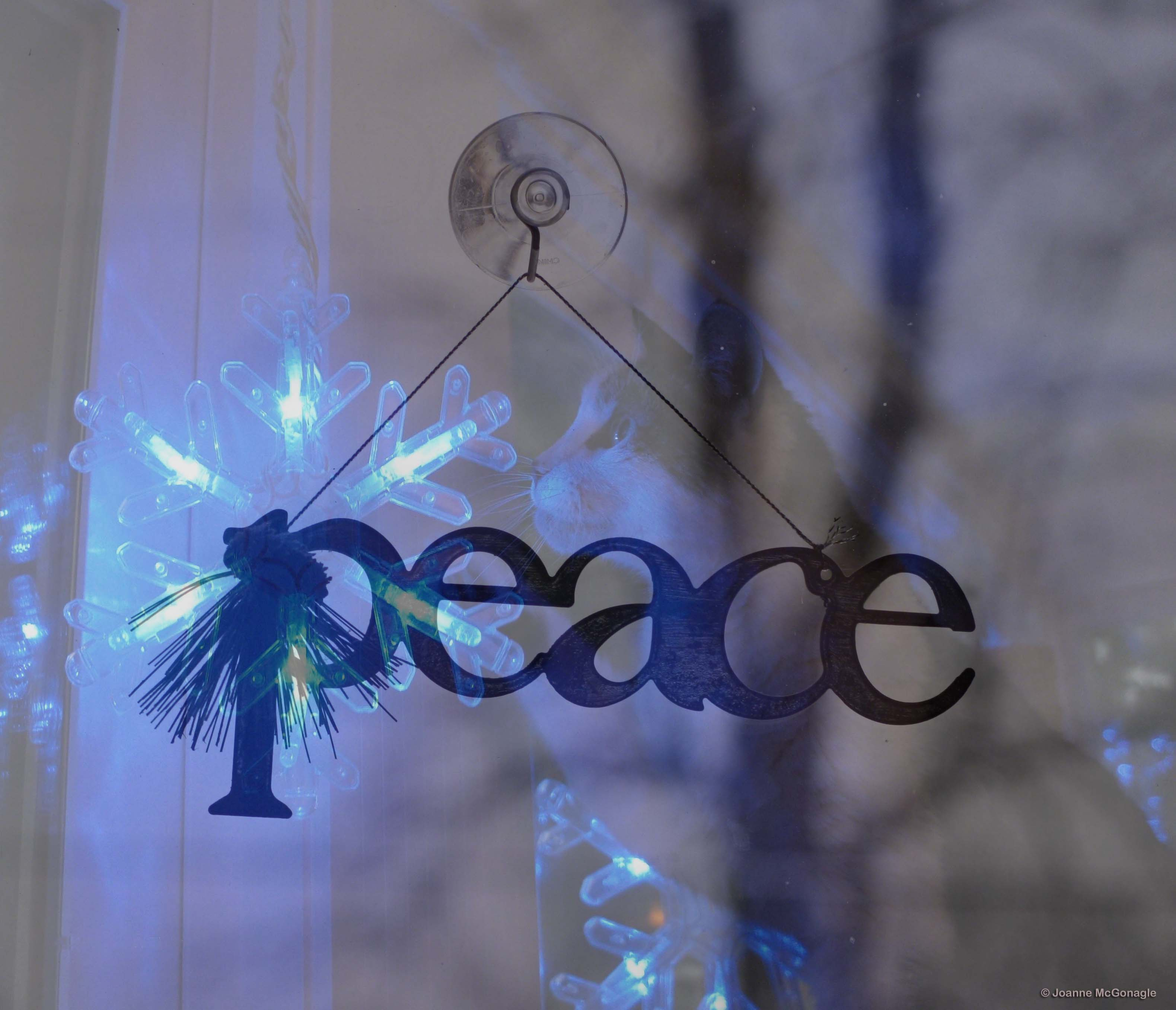 Blue Christmas Without You     Our Message to Gracey