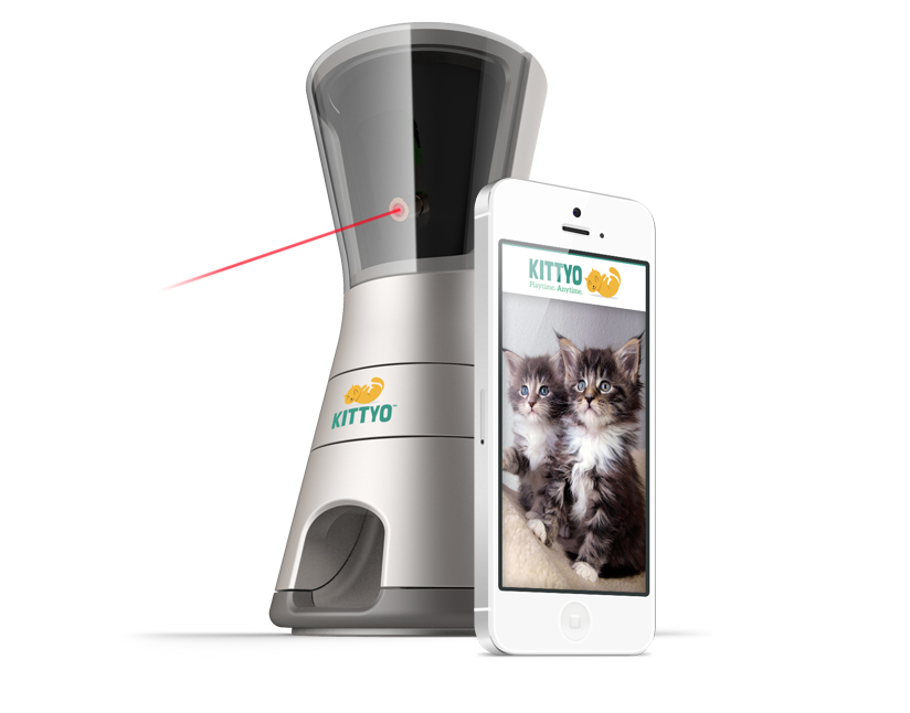 Kittyo: Play With Your Cat Even When You're Not Home