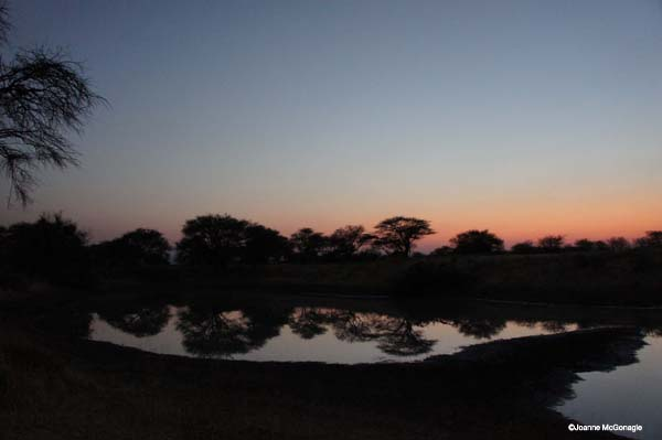 end of night at Namibian waterhole