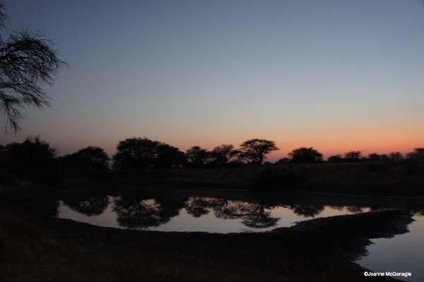 end of night at Namibian waterhole