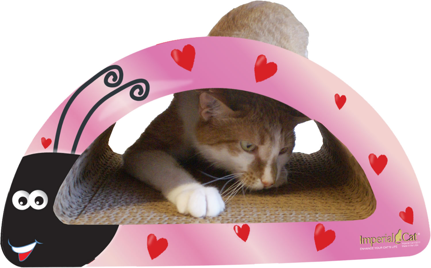 Imperial Cat  Happy Valentines's Day Cat Kit Giveaway