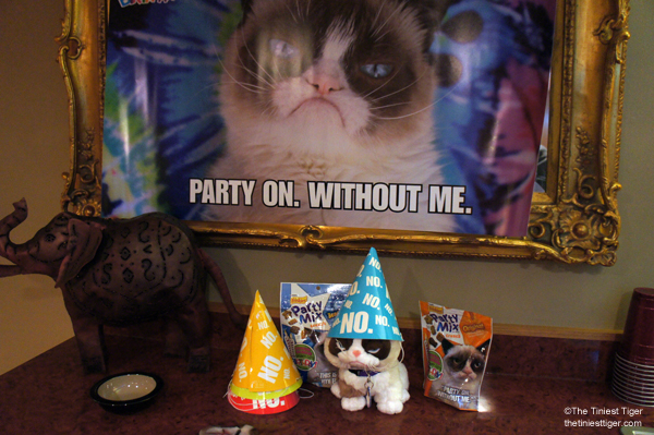 Grumpy Cat Party Set up