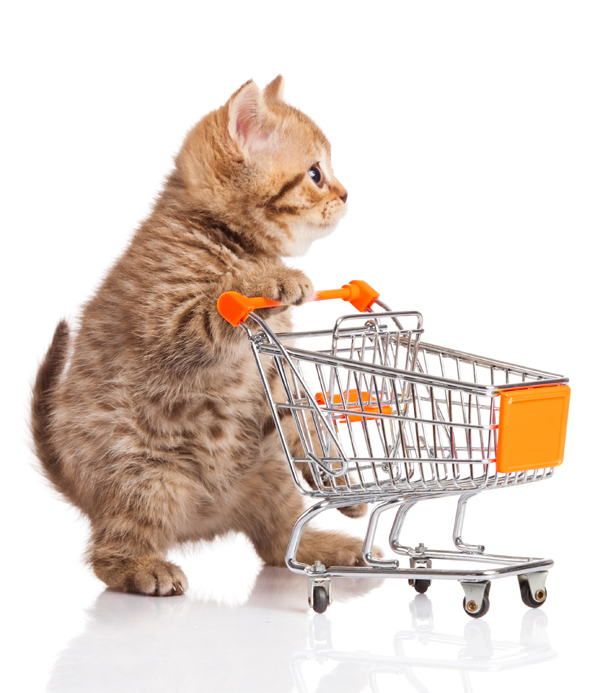 Does Your Cat Eat Healthier Than You?  #WildOats4All