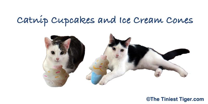 catnip cupcake giveaway image