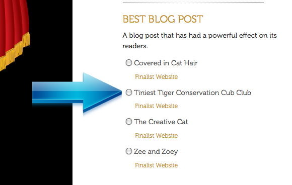 Will You Vote For The Tiniest Tiger for Best Cat and Best Blog Post?