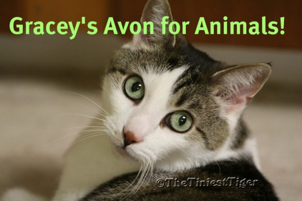 Gracey's Avon For Animals image