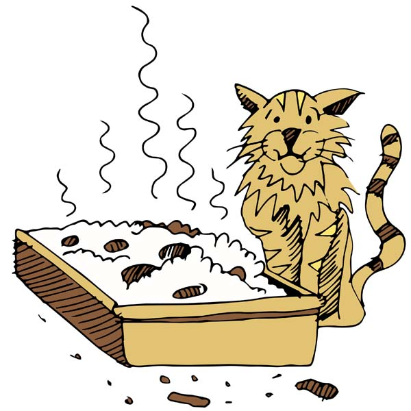 ReThinking the Litterbox  Put Yourself in Your Cat's Paws