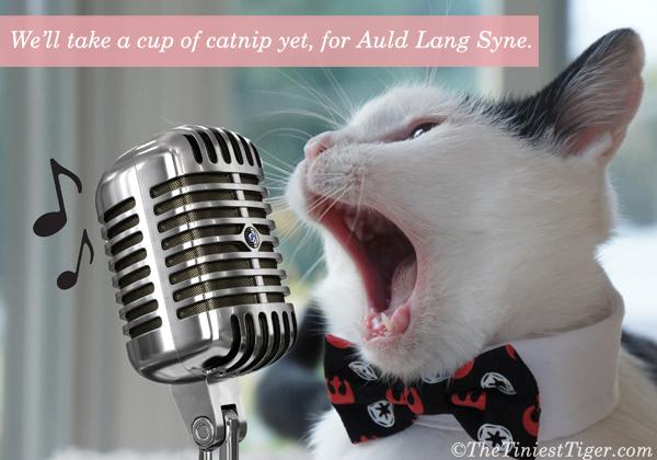 Eddie karaoke