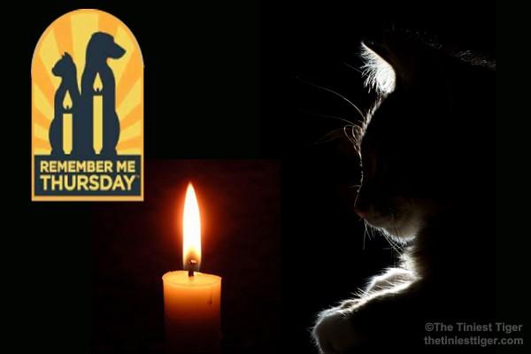 remember me Thursday light a candle