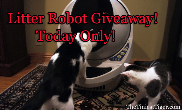 The Tiniest Tiger Litter Robot Giveaway Day!