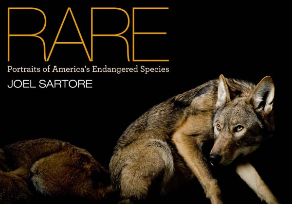 RARE  Portraits of America's Endangered Species Giveaway