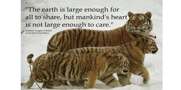 The earth is large enough quote