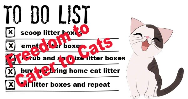 to do list with Tidy Direct