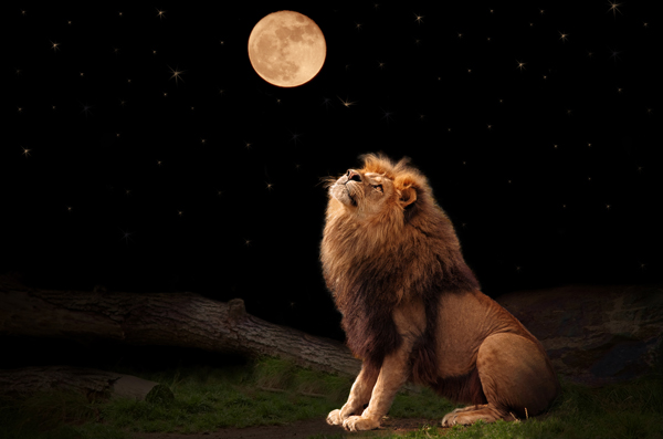 Instinctive Fear of Darkness, the Full Moon and Lions