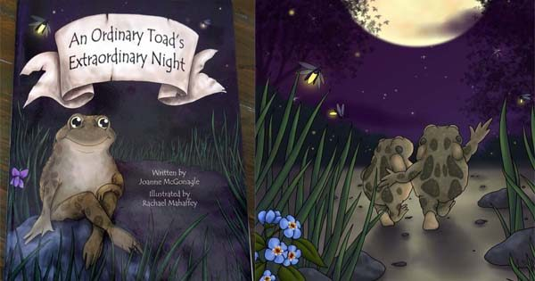 An Ordinary Toad's Extraordinary Night