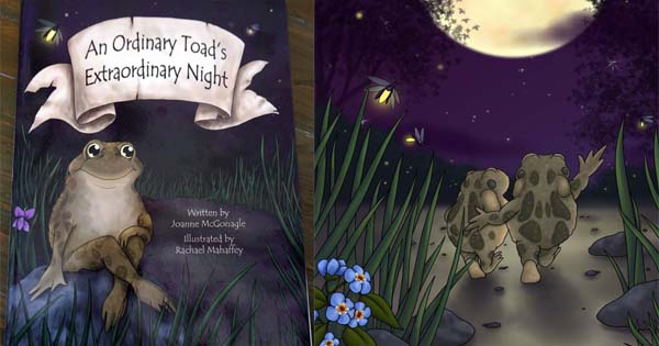 An Ordinary Toad's Extraordinary Night Giveaway