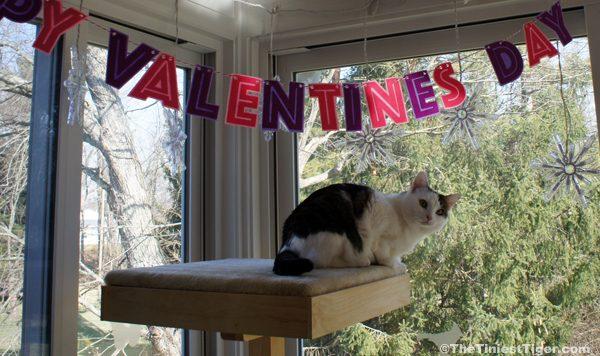 Annie with Valentine banner