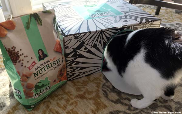 Eddie checks out the Nutrish Indoor Cat Box