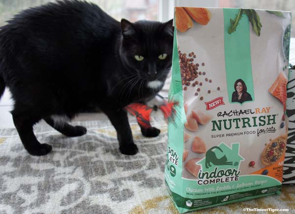 Keep Your Indoor Cat Happy and Healthy Giveaway