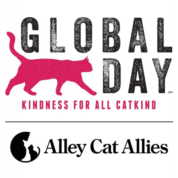 Alley Cat Allies Global Cat Day