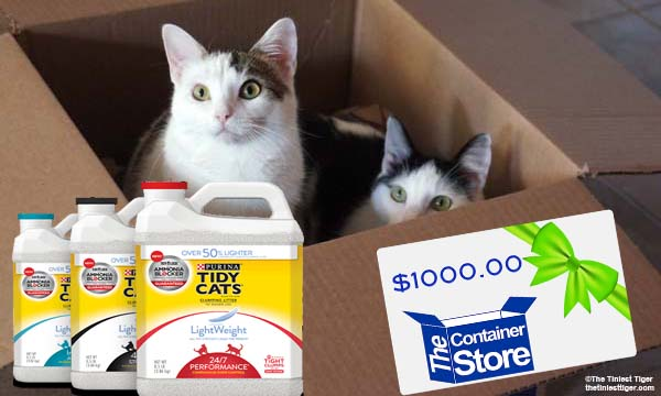 Tidy Cats Contain Yourself $1000 Gift Card Giveaway
