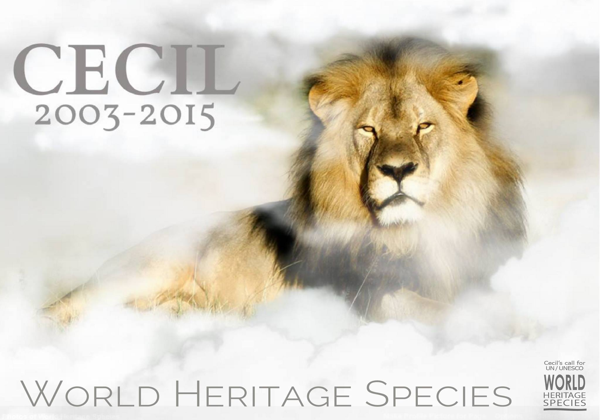 Honor Cecil by Signing World Heritage Species Petition