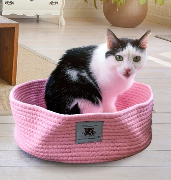 Eddie in pink cotton rope bed