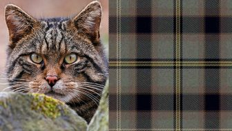 Scottish Wildcat Tartan Scarf Giveaway