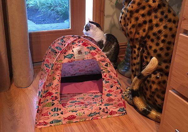 Triple T Studios Cat Tent
