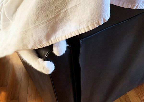 Eddie hiding from Annie