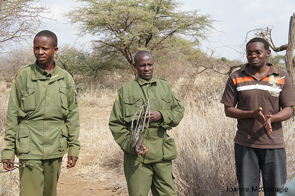Every Wildlife Ranger Counts