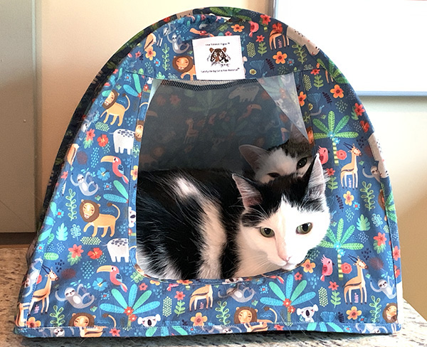 New! Wild Safari Cat Tent Giveaway