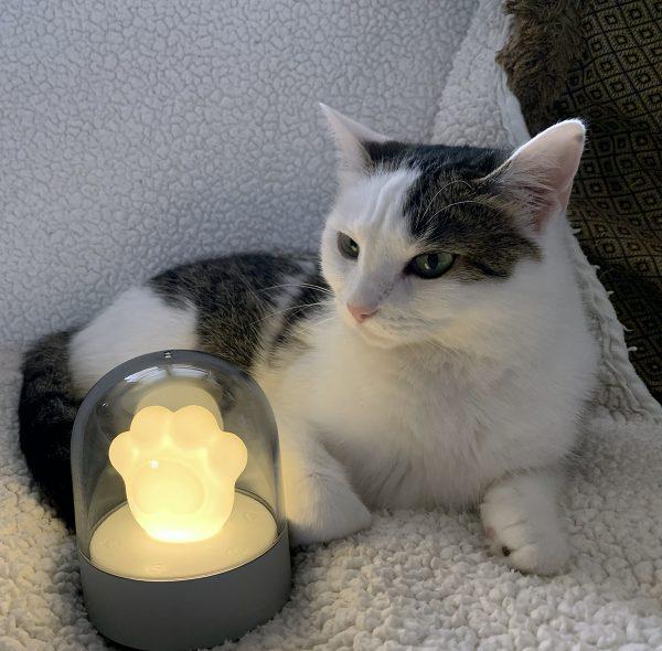 cat paw night light