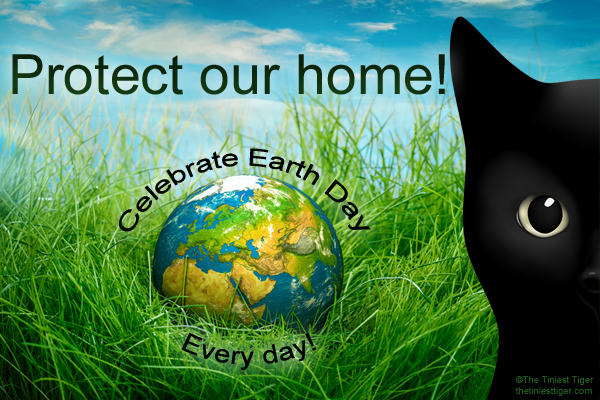 Earth Day. connect with cats