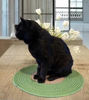 Cotton rope cat mat