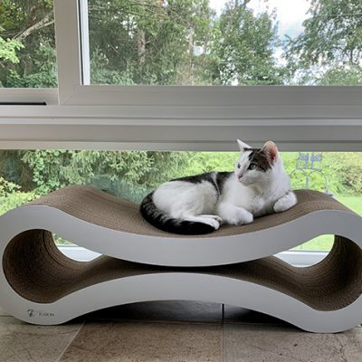 New Cat Scratchers for the Sunroom
