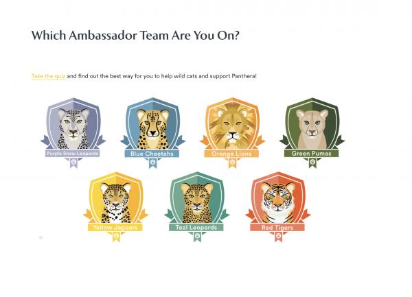 Panthera Ambassador Team Quiz