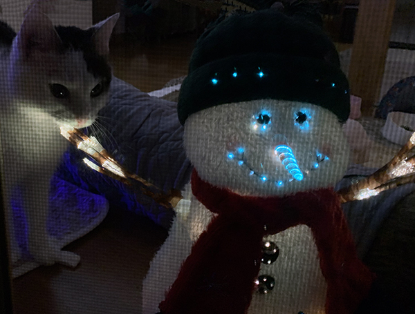 Annie and Welcome Home Snowman