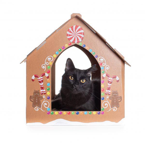 Cat in Gingerbread Cat house
