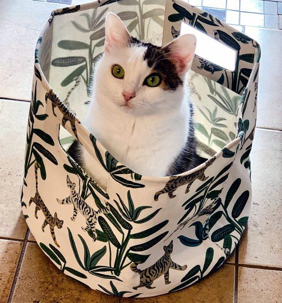 Annie n Cat Canvas Storage Bin